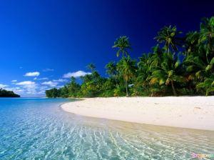 TropicalShore