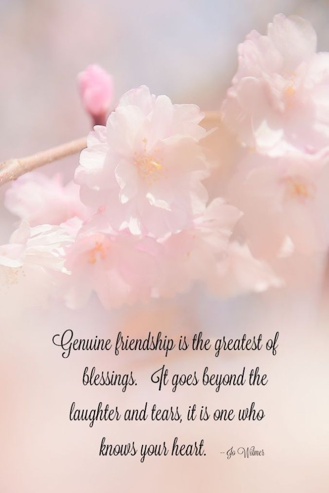 genuine-friendshigreatest-blessing-quotes-sayings-pictures
