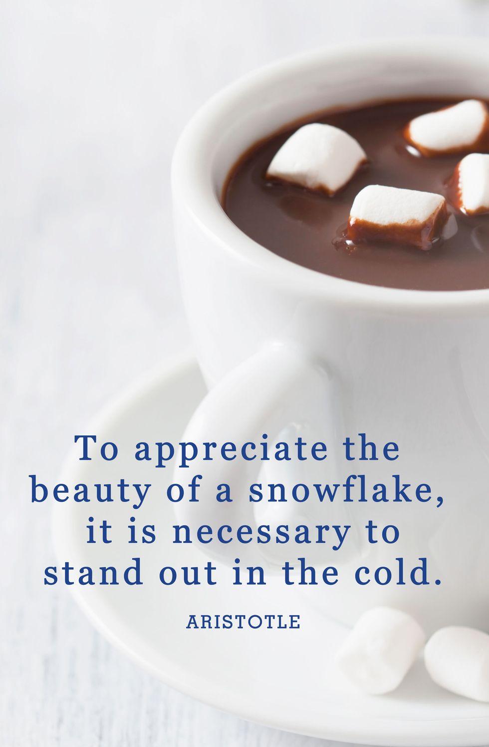 winter-snow-quotes-aristotle-1543337981