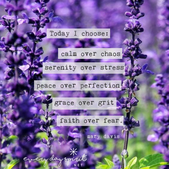 quote-today-i-choose